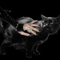 Adele Cat Woman 1